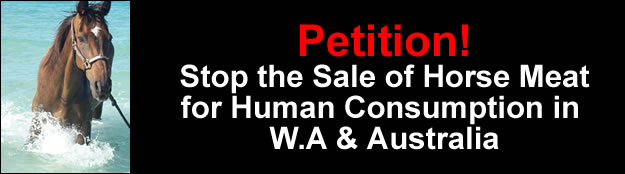 Petition to Stop the Sale of Horse Meat for Human Consumption in W.A & Australia!